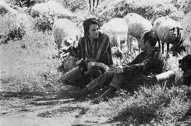 Dos d�as antes de su muerte, Nino se fotografi�, junto a un pastor, en las afueras de Valencia. El cantante coment�: <<Esta es la vida que tendr�amos que vivir>>.